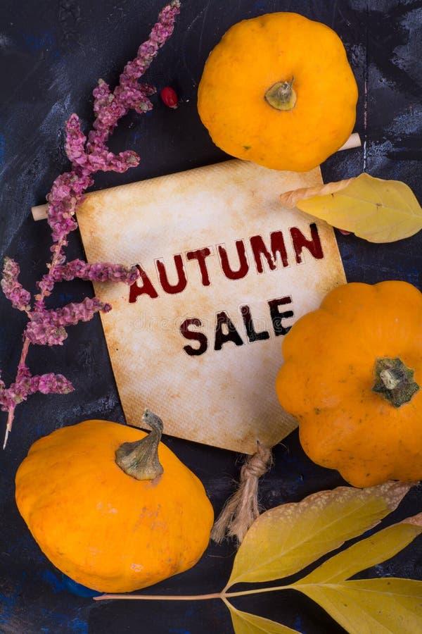 VENDITA di autunno immagini stock libere da diritti