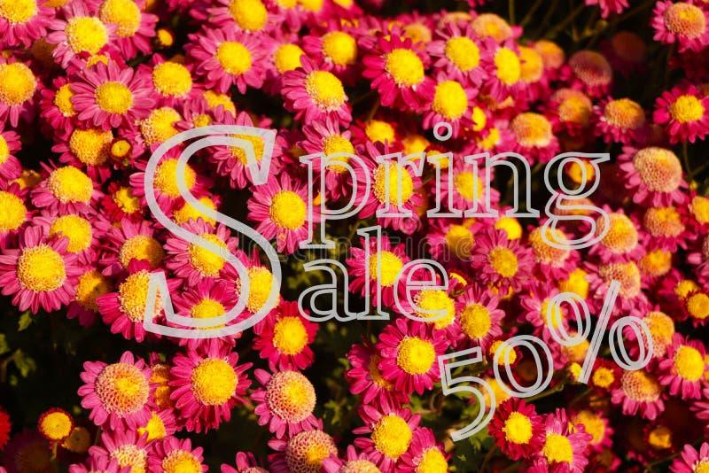 Vendita di primavera Sfondo promozionale con fiore colorato per offerta speciale di primavera 50 off fotografie stock libere da diritti