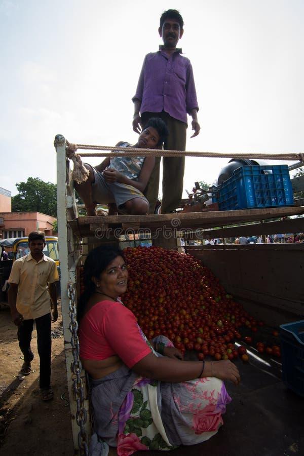 Venditore dei pomodori con la famiglia sul camioncino alla mattina locale marzo fotografia stock