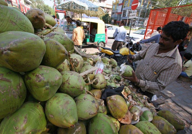 Venditore New Dehli India della noce di cocco immagine stock