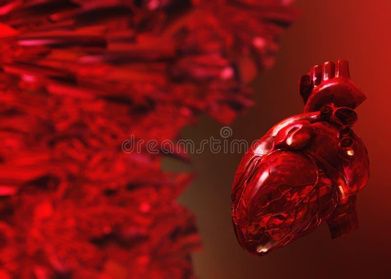 Vene ed arterie, apparato circolatorio illustrazione di stock