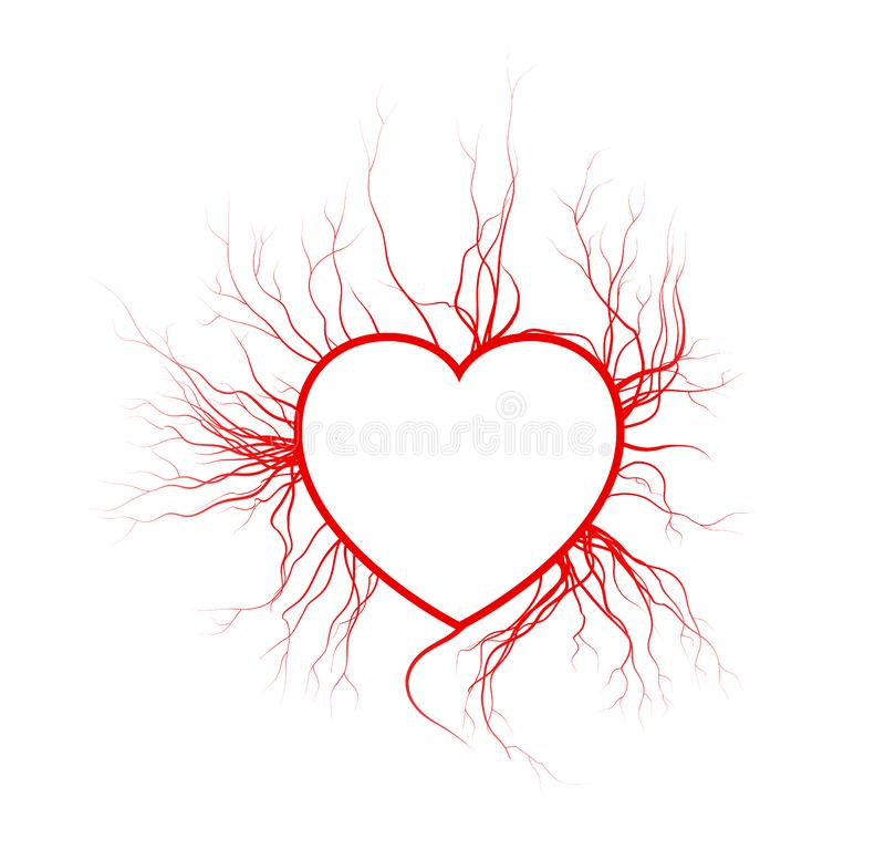 Vene umane con cuore, progettazione rossa del biglietto di S. Valentino dei vasi sanguigni di amore Illustrazione di vettore isol illustrazione vettoriale