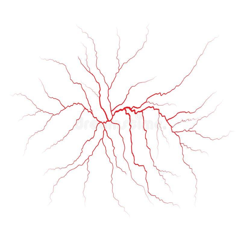 Vene, vasi sanguigni ed arterie rossi Illustrazione di vettore illustrazione di stock