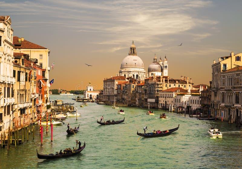 Venedig, den storslagna kanalen, domkyrkan av Santa Maria della Salute och gondoler med turister, b?sta sikt royaltyfri foto