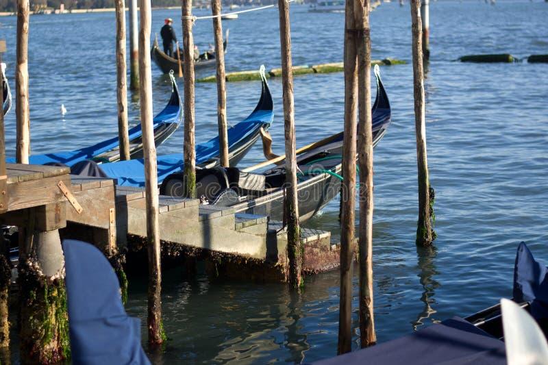 Venedig och biofestivalen, gondole royaltyfri bild