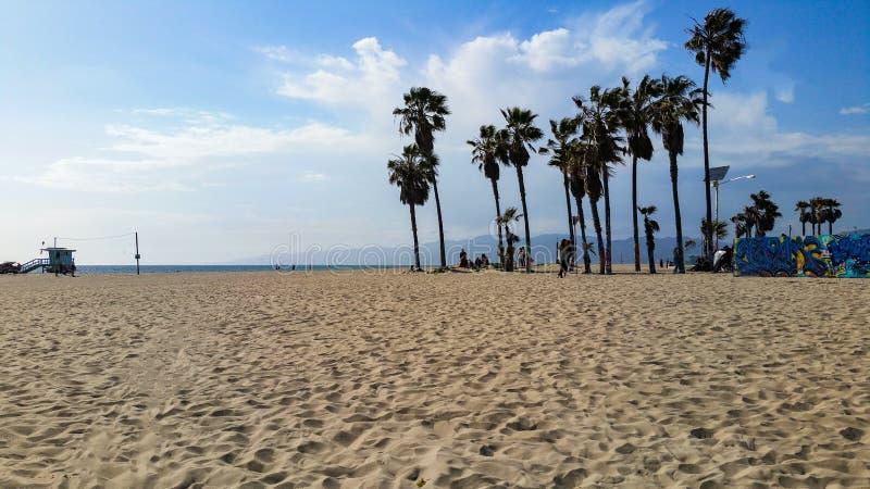 Venedig strandpalmträd med avlägsna stormmoln arkivfoto