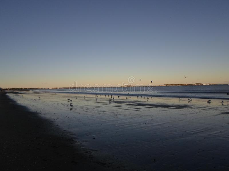 Venere la playa, venerela, Massachusetts, los E.E.U.U. foto de archivo