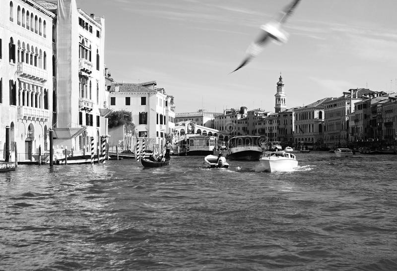 Venetië 2010 royalty-vrije stock afbeelding
