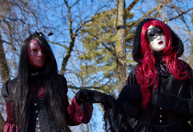 Venetiaans Carnaval in Annecy, Frankrijk stock afbeeldingen