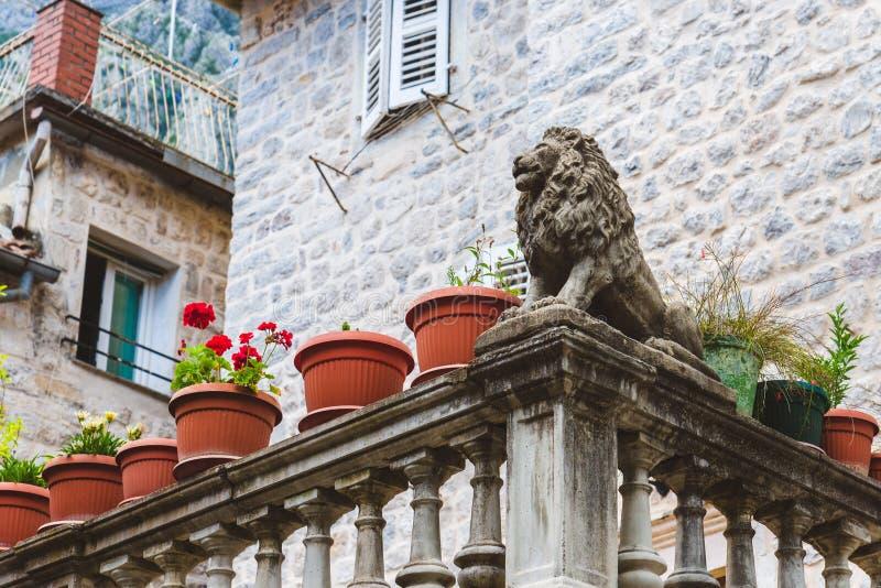 Venetiaans Lion Statue in Kotor stock foto's