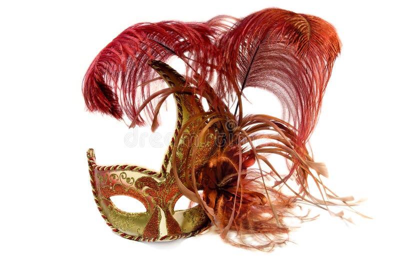 venetian arnival maskering fotografering för bildbyråer