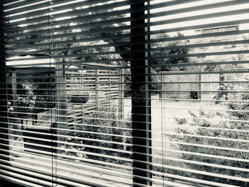 Looking through Venetian Blinds into the Garden stock images
