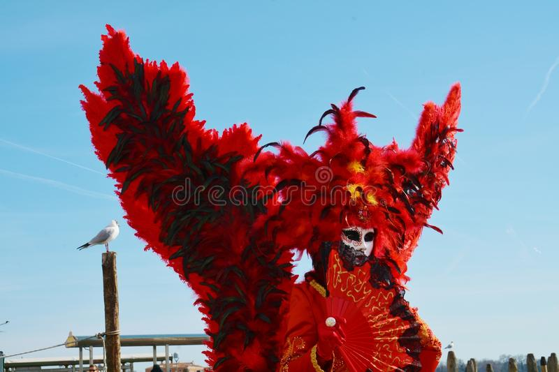 Venetian carnival, red mask and feathers, Venice, Italy royalty free stock photo