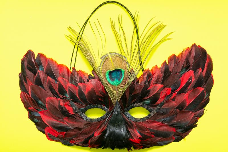 Venetian Colorful Cat Mask with Black and Red Feathers. Fancy Vintage festive Mardi Gras or Carnival Mask on a bright yellow royalty free stock images
