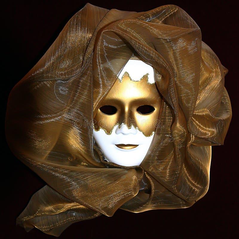 Venetian masque arkivfoto
