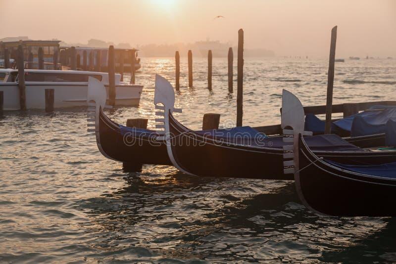 Venetianische Gondeln bei Sonnenaufgang in Venedig lizenzfreies stockbild