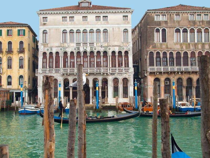 Veneza, Italy, Europa fotos de stock royalty free