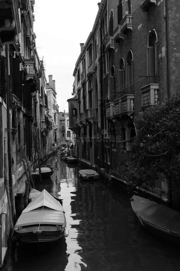 Venezia stockfoto