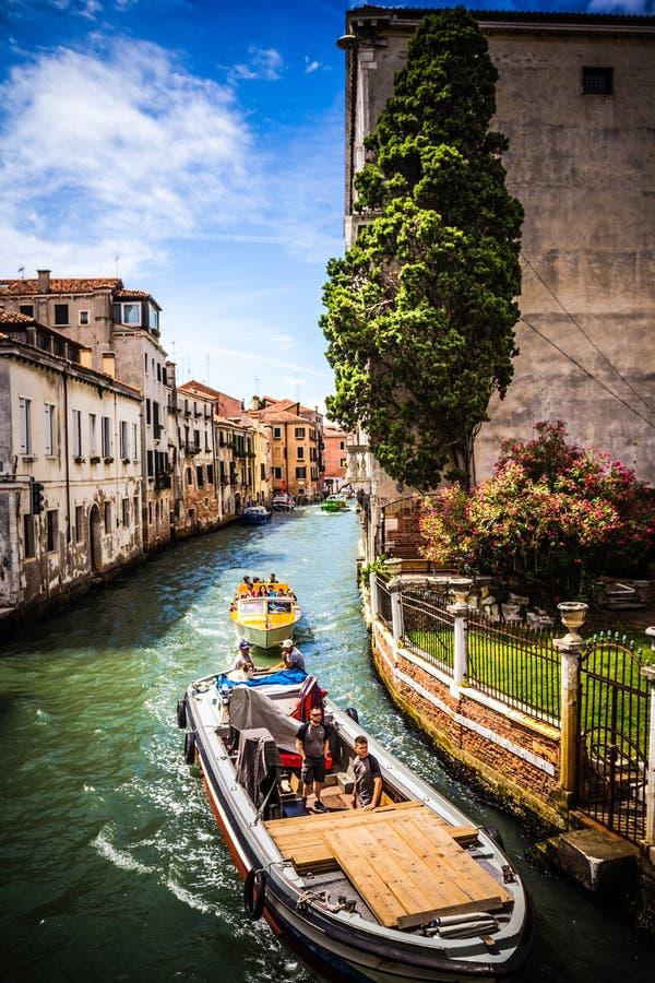 VENEZIA, VENEZIA, ITALIA immagini stock libere da diritti