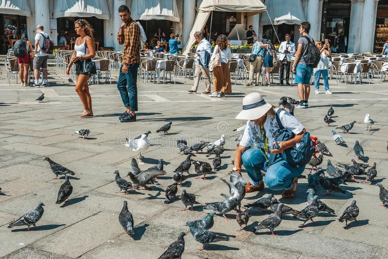 Venezia, Italia, il 4 settembre 2018 Venezia ? una citt? dell'Italia I turisti camminano sul quadrato di St Mark Piccioni d'alime immagine stock