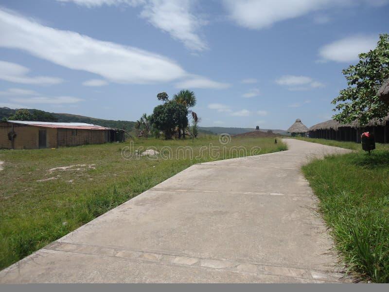 Venezuela de amazon do savana do parque das cabanas da paisagem grande fotografia de stock royalty free