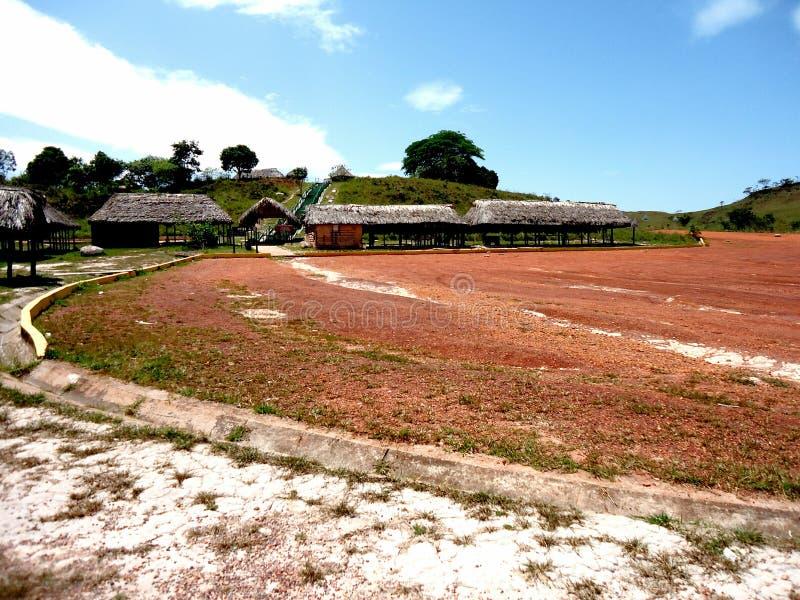 Venezuela de amazon do savana do parque das cabanas da paisagem grande imagens de stock royalty free