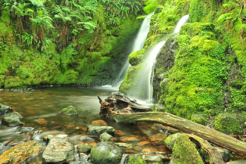 Venforddalingen, dichtbij Dartmoor, Devon stock afbeeldingen