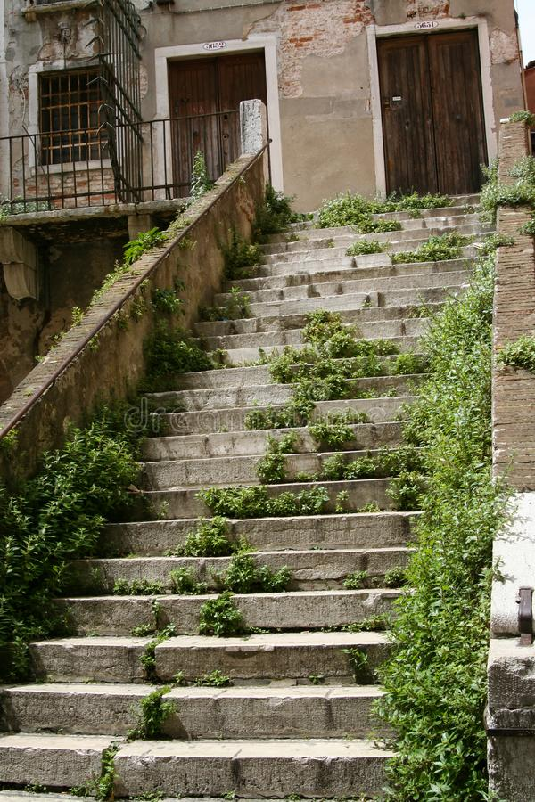 Venice, abandoned palace staircase. With weeds and gates stock photo