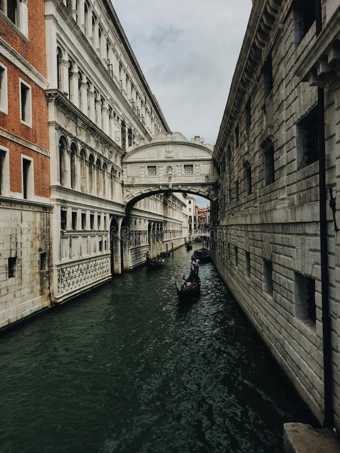 Venice in summer royalty free stock images