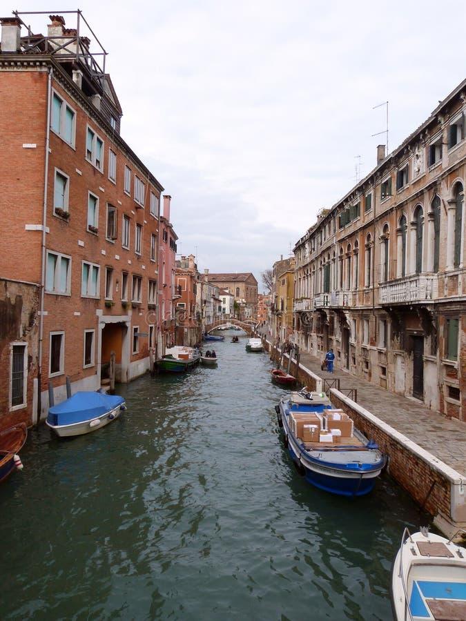 Download Venice stock image. Image of doge, gull, spring, palladium - 30519033