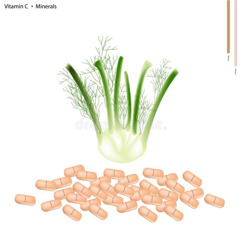 Venkelbol met Vitamine C en Mineralen vector illustratie