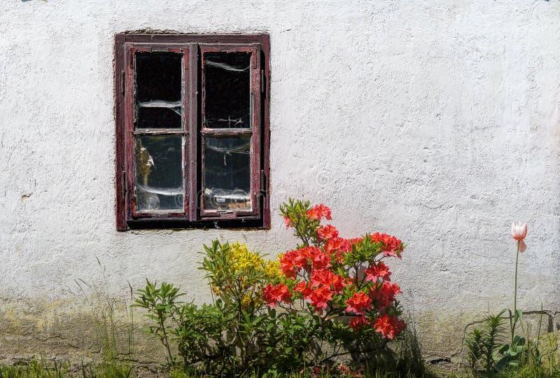 Venster in de tuin stock afbeeldingen