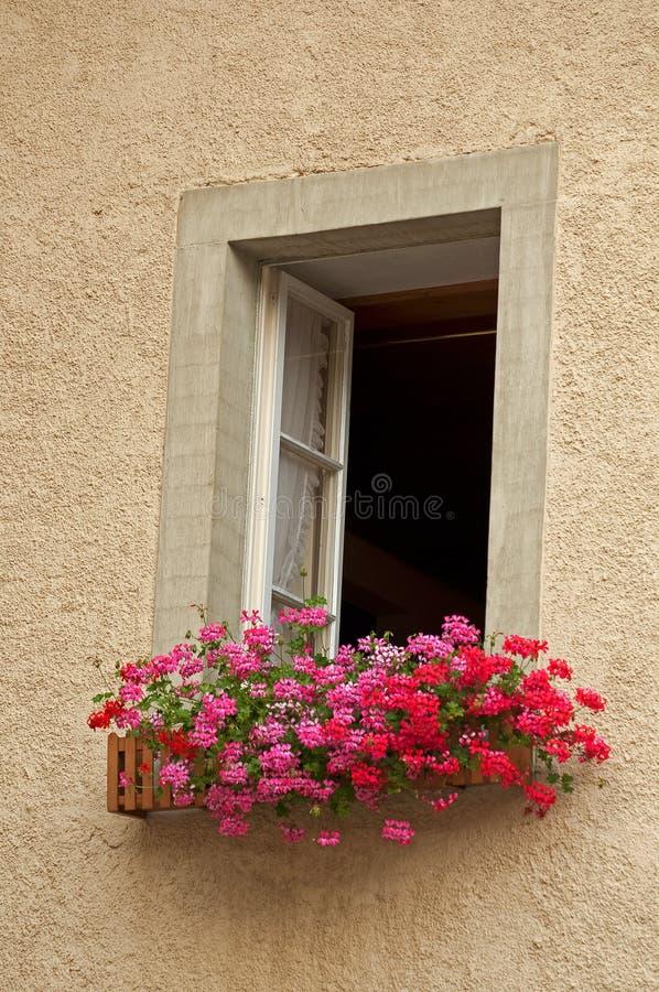 Venster en bloemen stock afbeelding