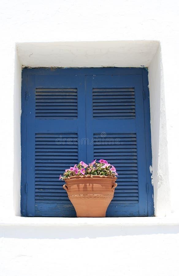 venster met bloem royalty-vrije stock fotografie