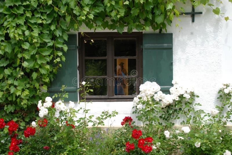 Venster met groene blinden en witte rozen in Linderhof-kasteel in Beieren (Duitsland) stock foto's