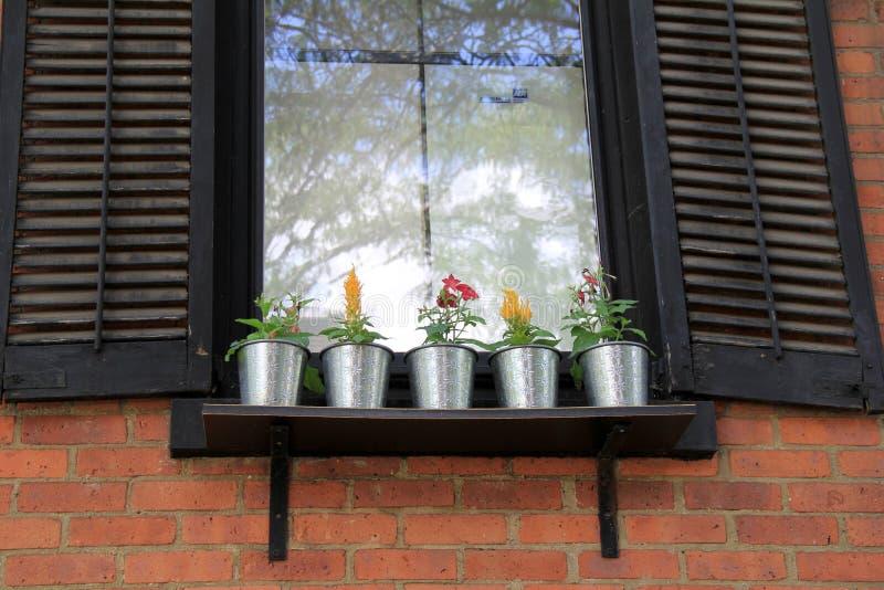 Vensterbank van het huis van het land met vijf kleine for Decoratie op vensterbank
