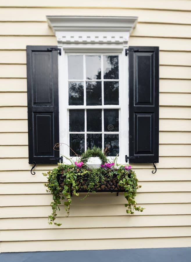 Vensters en van vensterdozen de versieringen van plantersvertoningen verbeteren architectuur stock afbeeldingen