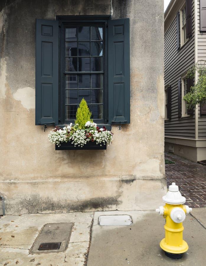 Vensters en van vensterdozen de versieringen van plantersvertoningen verbeteren architectuur royalty-vrije stock foto