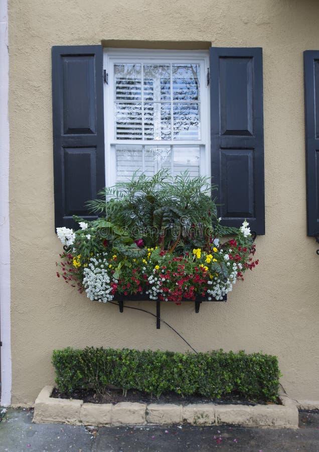 Vensters en van vensterdozen de versieringen van plantersvertoningen verbeteren architectuur stock foto's