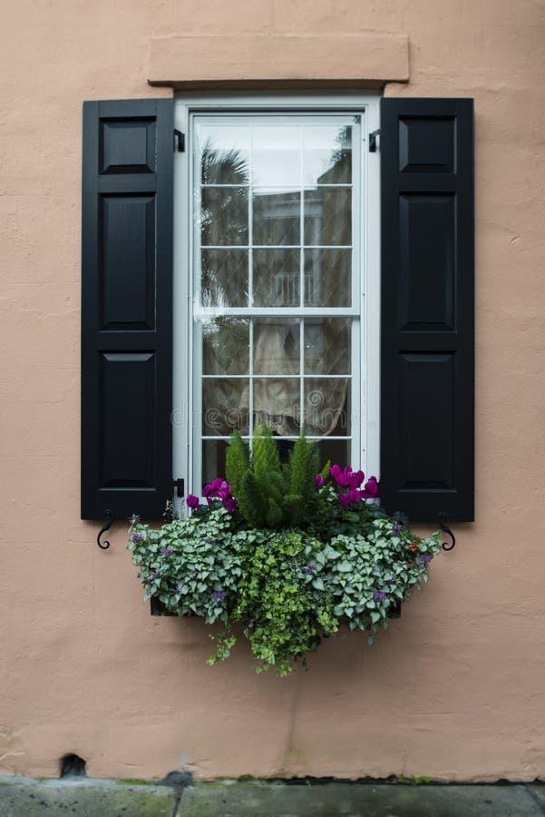 Vensters en van vensterdozen de versieringen van plantersvertoningen verbeteren architectuur stock afbeelding