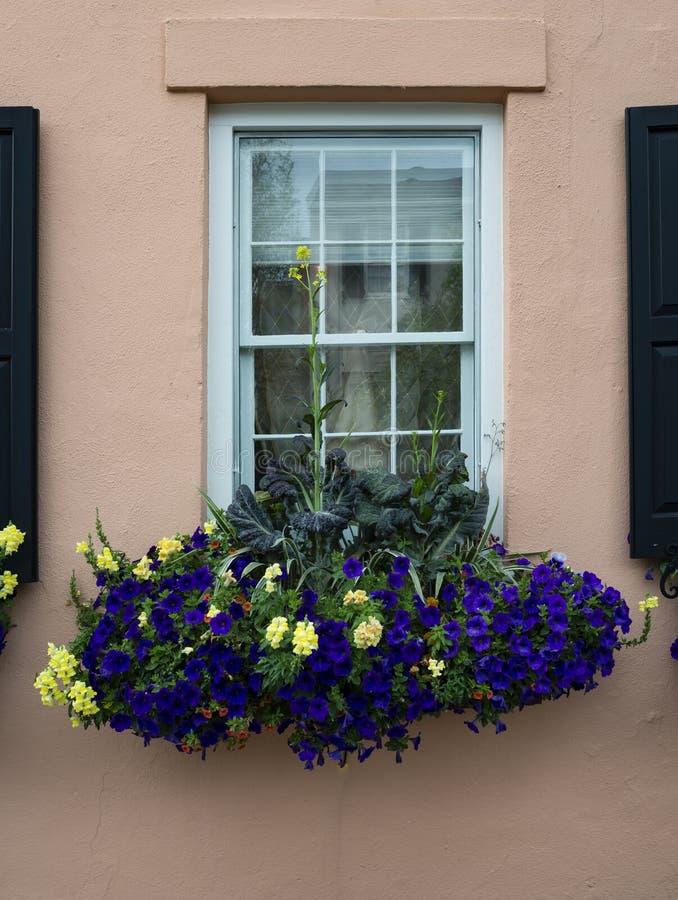 Vensters en van vensterdozen de versieringen van plantersvertoningen verbeteren architectuur stock fotografie