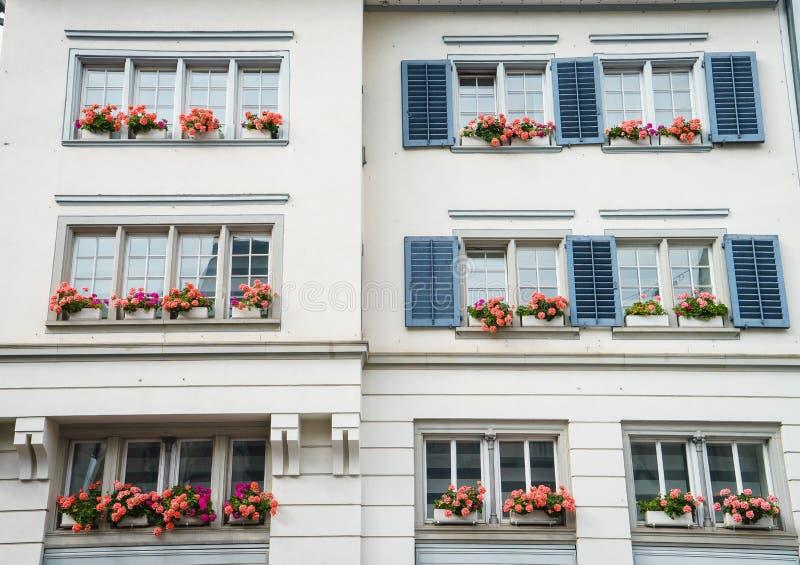 Vensters met bloemen stock fotografie