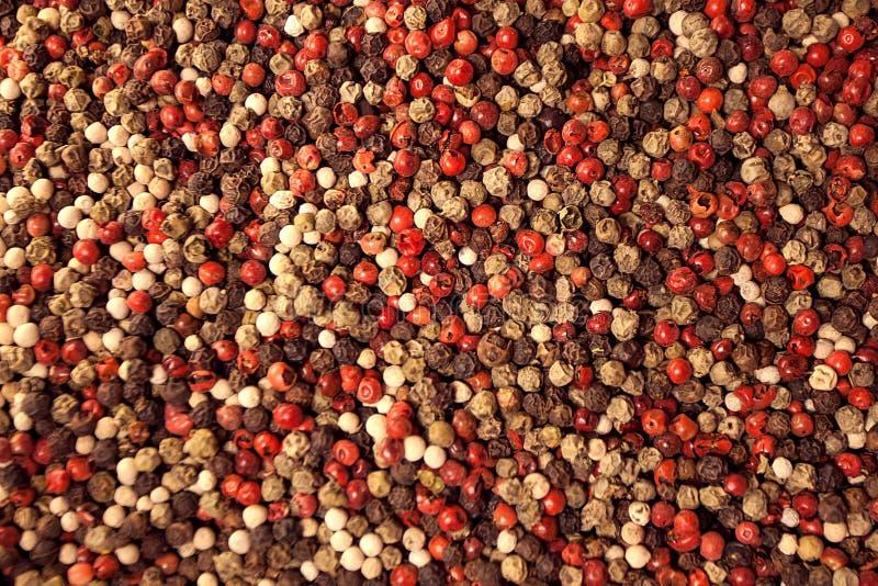 Venta de diversas especias en el mercado en Estambul Variedad de gusto y de aroma foto de archivo