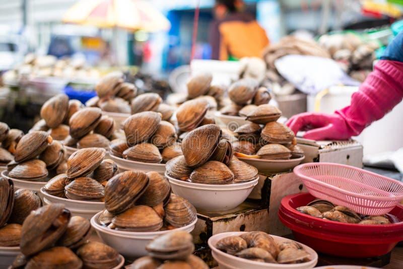Venta de la almeja en mercado de pescados en Busán foto de archivo libre de regalías