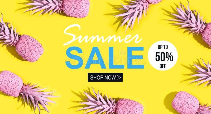 Venta del verano con las piñas pintadas ilustración del vector