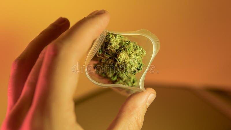 venta ilegal de la marijuana en Europa y Rusia nPlans para la legalización para 2018 foto de archivo