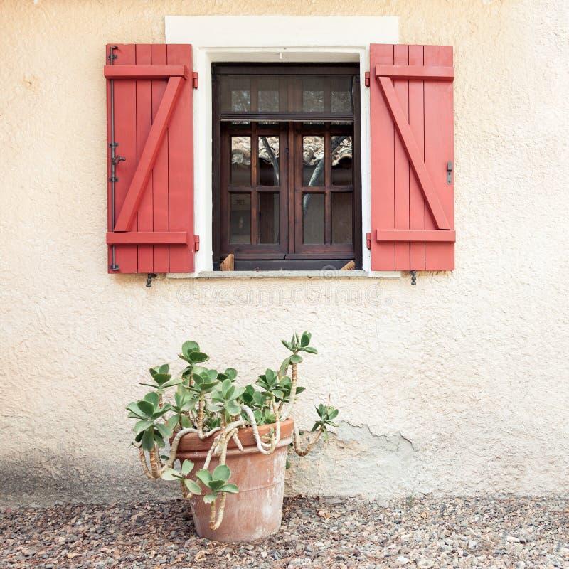 Ventana casera de madera vieja con los obturadores abiertos y la planta tropical en maceta foto de archivo libre de regalías