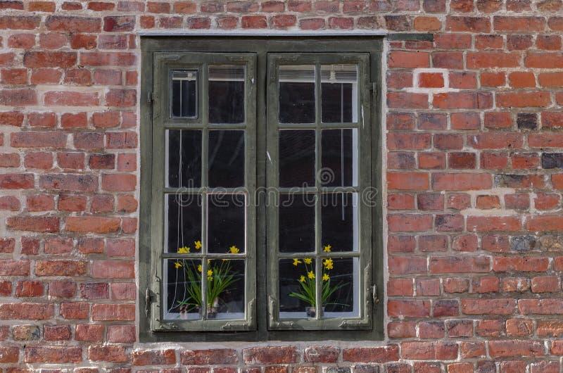 Ventana con las flores imágenes de archivo libres de regalías
