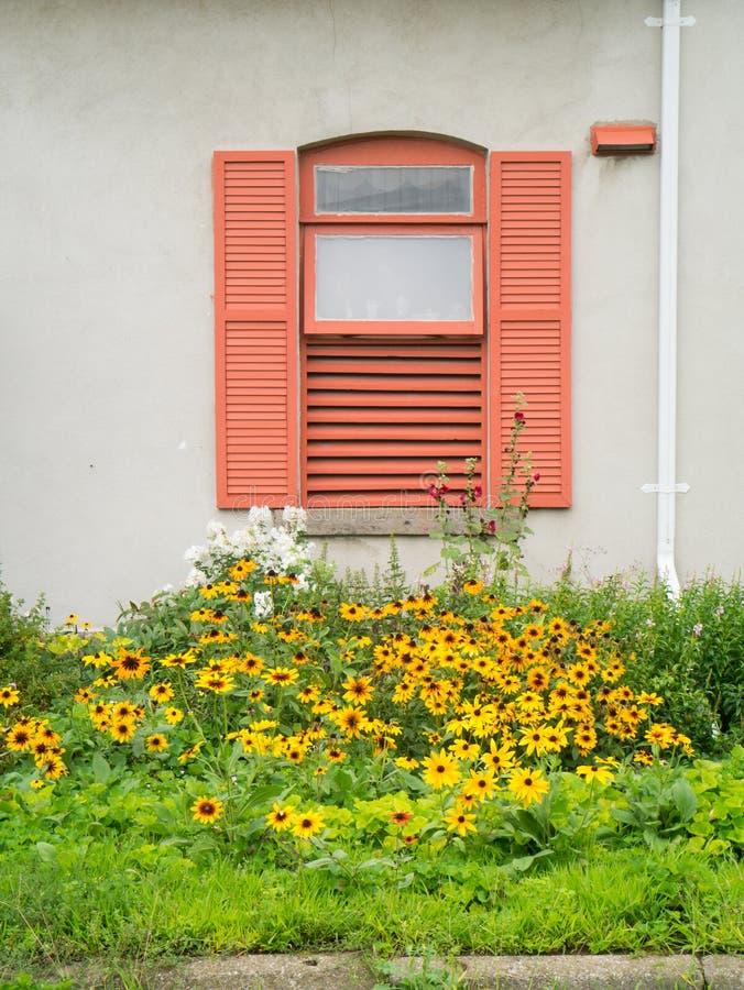 Ventana con los obturadores y las flores hermosas antes de ella. fotos de archivo libres de regalías