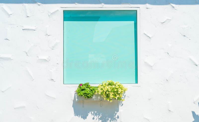 ventana de cristal en la pared blanca con la maceta fotos de archivo libres de regalías